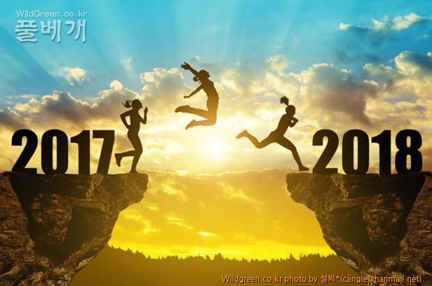 Happy New Year 18 16.jpg