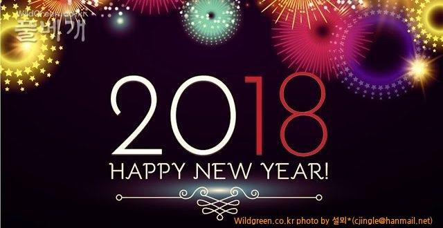 Happy New Year 18 2.jpg